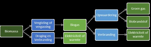 Toepassingen biomassa