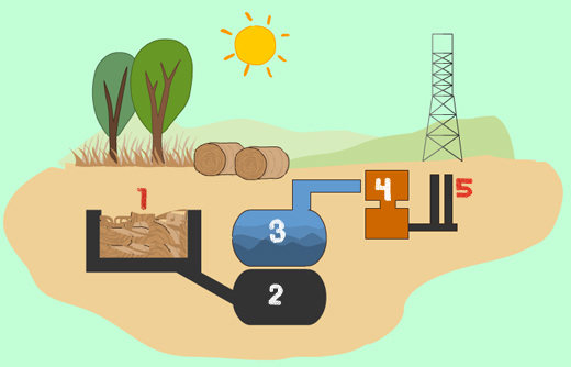 Biomass how it works